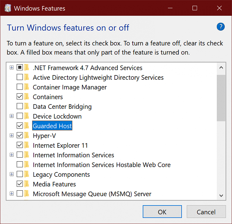 Open New Application Guard Window in Microsoft Edge-image.png