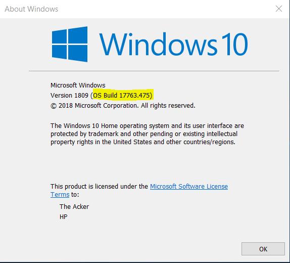 Change Cursor Shape of Console Window in Windows 10-window-build.png