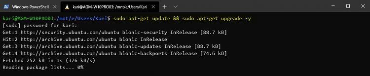 Windows Subsystem for Linux - Add desktop experience to Ubuntu-update-ubuntu.jpg