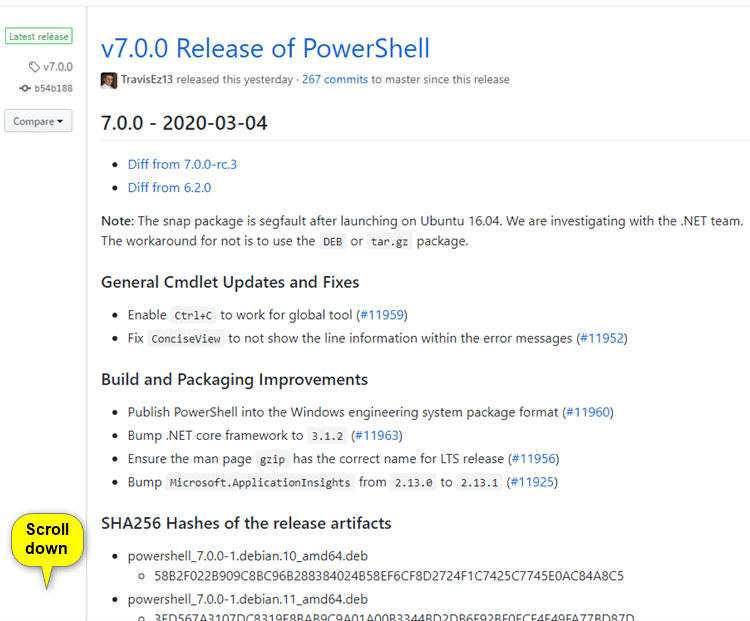 How to Install PowerShell 7 in Windows 7, Windows 8, and Windows 10-install_powershell_7-1.png