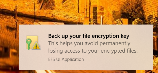 Find All Encrypted Files in Windows 10-2020-08-07_19-47-02.png