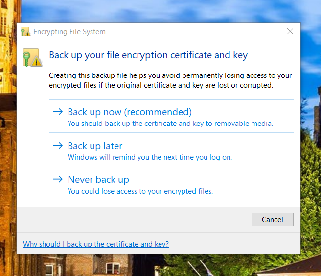 Find All Encrypted Files in Windows 10-2020-08-07_19-47-17.png