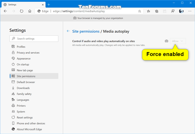 How to Enable or Disable Media Autoplay in Microsoft Edge Chromium-force_enable_media_autoplay_in_microsoft_edge.png