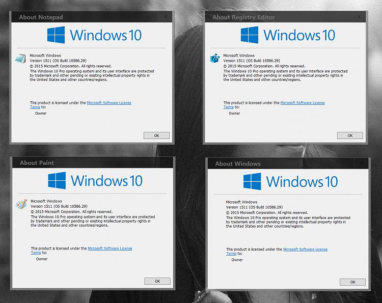 Find Windows 10 Version Number-000068.png
