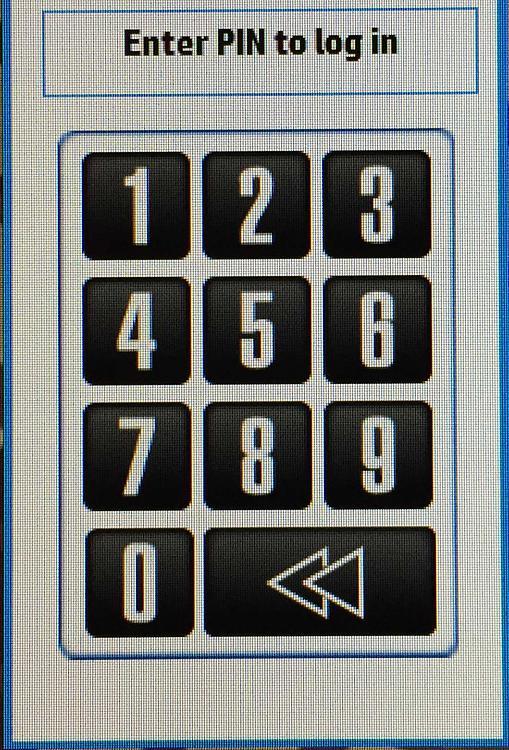PIN-pic-cropped-2.jpg