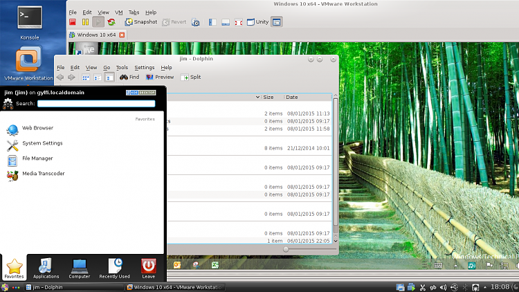 Win 10 as guest in virtualbox (with LinuxMint as host)-snapshot3.png