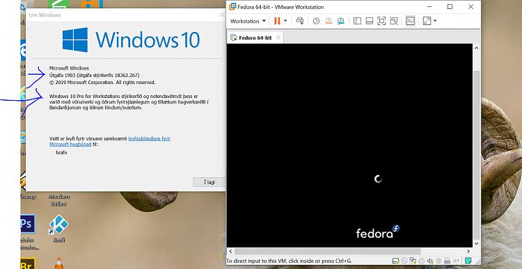 VMWARE fedora 30 Kernel 5.0.X OK 5.2 crashes-fedora30.png