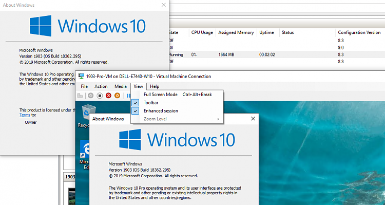 After August update Hyper-v Win10VM crashes when connecting via RDP-enhanced-session.png