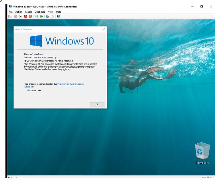 Click image for larger version.  Name:Hyper-V Build 1703.PNG Views:6 Size:720.0 KB ID:125999