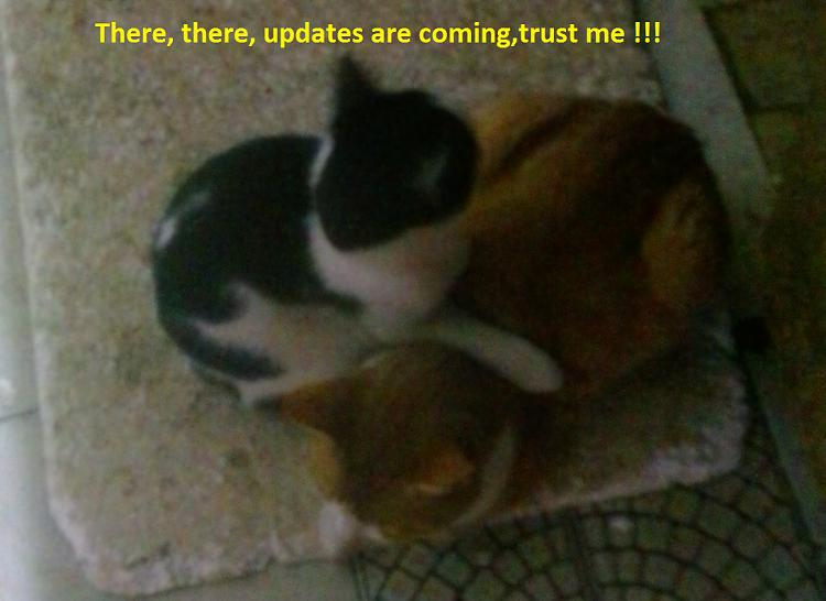 Click image for larger version.  Name:MS Update 2.jpg Views:20 Size:201.1 KB ID:13849