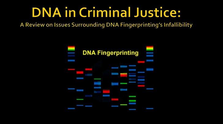 Click image for larger version.  Name:DNA Slide.png Views:17 Size:129.9 KB ID:14848