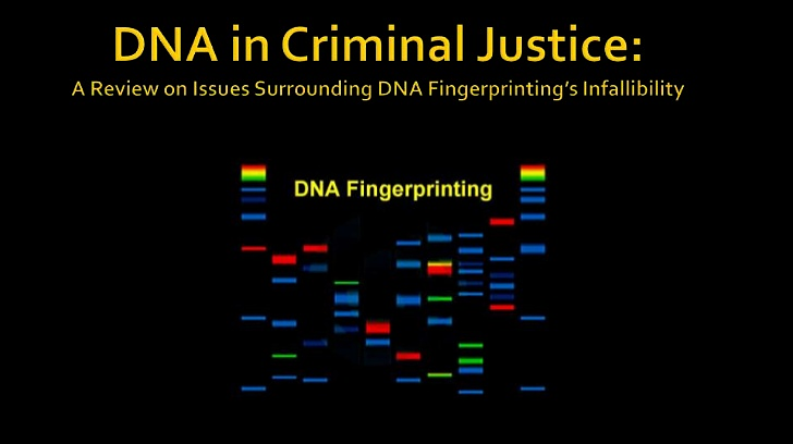 Click image for larger version.  Name:DNA Slide.png Views:16 Size:129.9 KB ID:14848