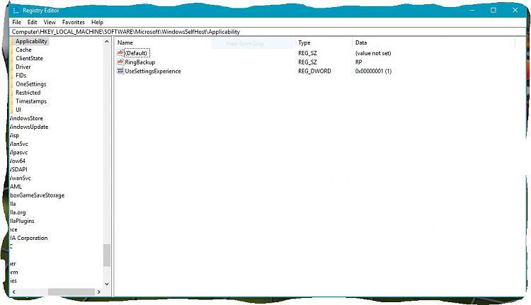 Cumulative Update KB4043961 Build 16299.19 for PC-regedit.jpg