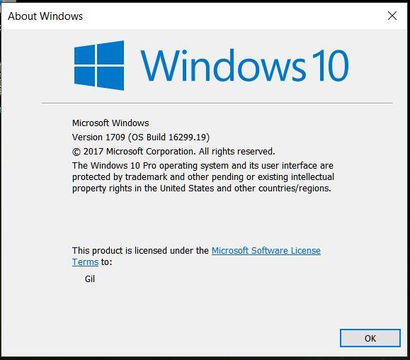 Cumulative Update KB4043961 Build 16299.19 for PC-winver.jpg