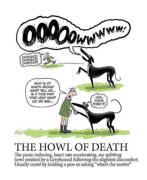 Click image for larger version.  Name:greyhound scream.jpg Views:101 Size:59.6 KB ID:163387