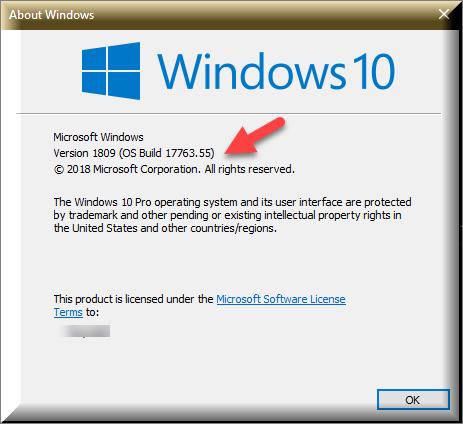Cumulative Update KB4464330 Windows 10 v1809 Build 17763.55 - Oct. 9-winver-after-kb4464330.png