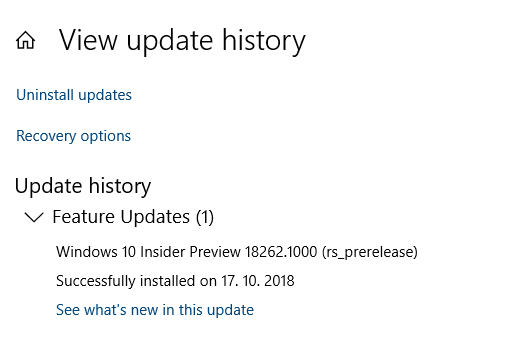 New Windows 10 Insider Preview Fast + Skip Build 18262 (19H1) Oct. 17-image.png