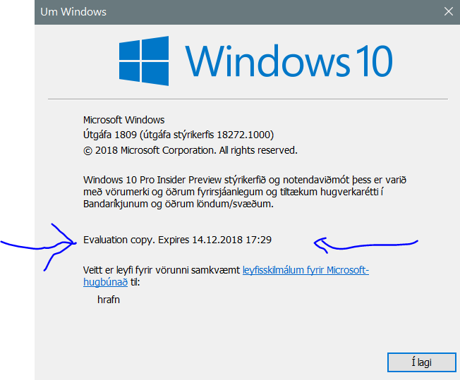 New Windows 10 Insider Preview Fast + Skip Build 18272 (19H1) Oct. 31-skippy.png