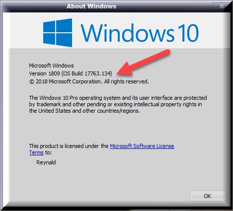 Cumulative Update KB4467708 Windows 10 v1809 Build 17763.134 - Nov. 13-winver-after-installing-kb4467708.png