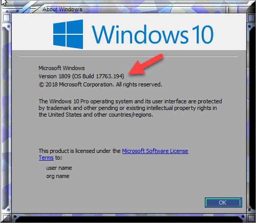 Cumulative Update KB4471332 Windows 10 v1809 Build 17763.194 - Dec. 11-winver-after-installing-kb4471332.png