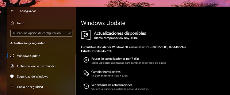 New Windows 10 Insider Preview Fast Build 18305.1003 (19H1) - Dec. 20-next-trim.png