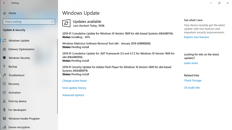 Cumulative Update KB4480116 Windows 10 v1809 Build 17763.253 - Jan. 8-1.png