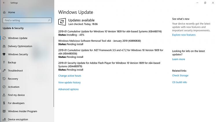 Cumulative Update KB4480116 Windows 10 v1809 Build 17763.253 - Jan. 8-1.png