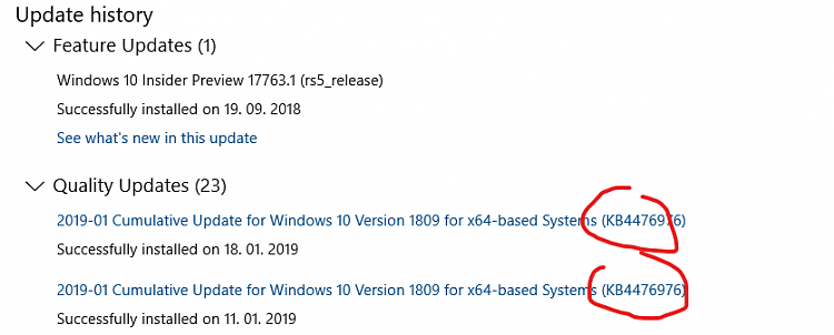 Cumulative Update KB4476976 Windows 10 v1809 RP Build 17763.292 Jan.18-image.png