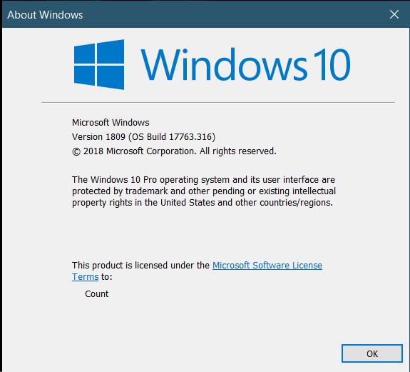 Cumulative Update KB4487044 Windows 10 v1809 Build 17763.316 - Feb. 12-image.png