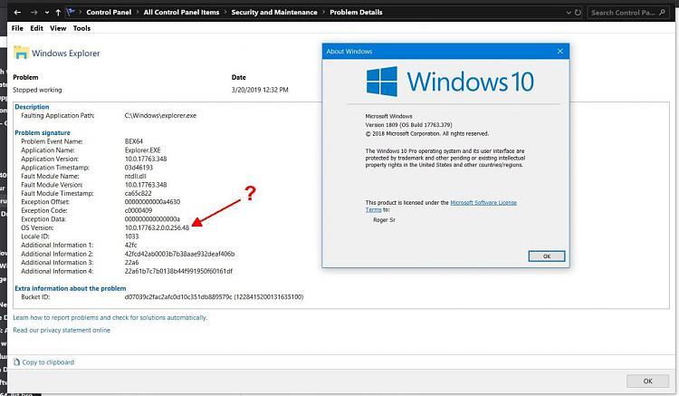 Current Status of Windows 10 October 2018 Update version 1809-xplorer_crash2.jpg