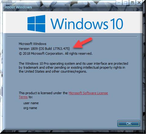Cumulative Update KB4495667 Windows 10 v1809 Build 17763 475