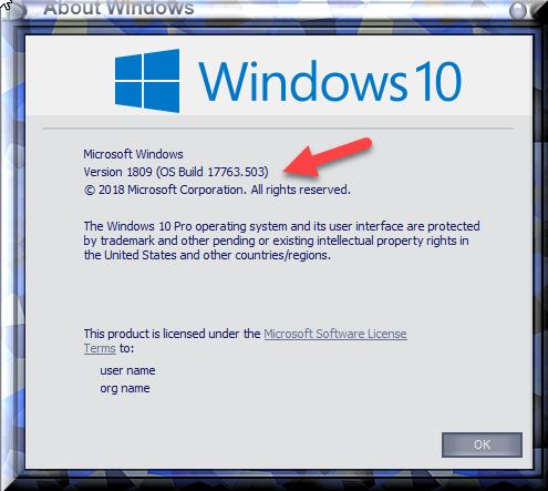 Cumulative Update KB4494441 Windows 10 v1809 Build 17763.503 - May 14-winver-after-installing-kb4494441.png