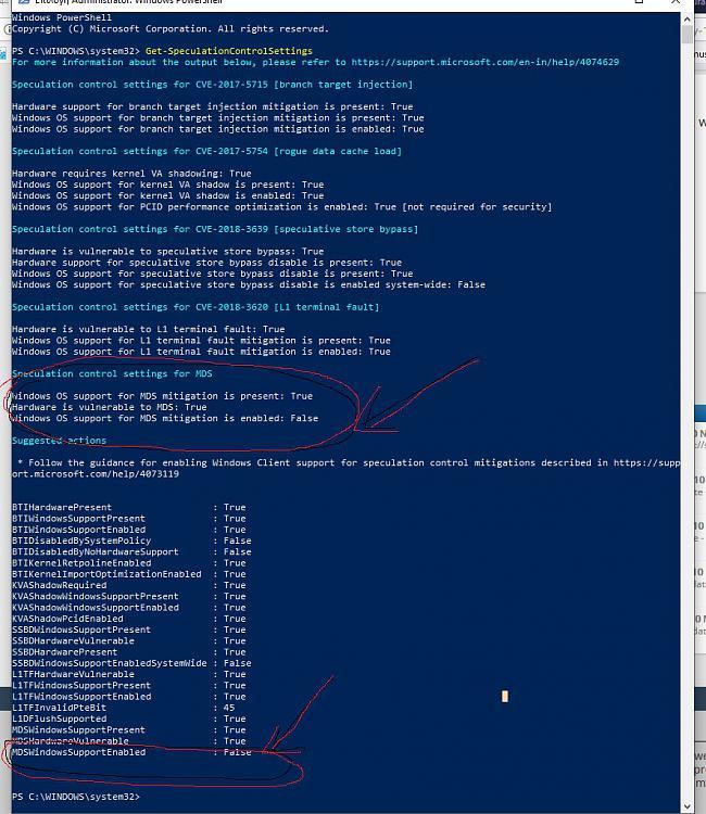 Cumulative Update KB4494441 Windows 10 v1809 Build 17763.503 - May 14-1.jpg