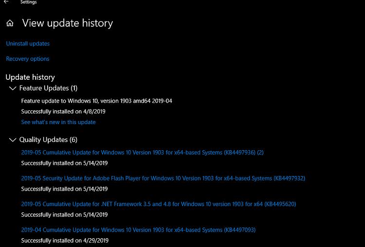 Cumulative Update KB4497936 Windows 10 Insider 1903 build 18362.113-2019-05-14_15h43_05.png