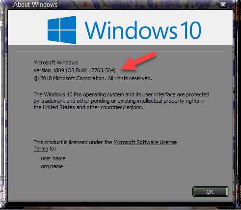 Cumulative Update KB4505056 Windows 10 v1809 Build 17763.504 - May 19-winver-after-installing-kb4505056.png