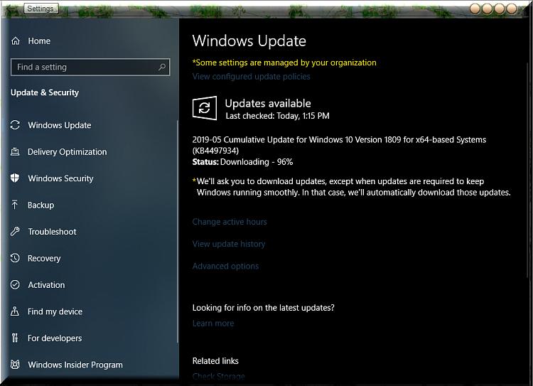 windows 10 1809 update download catalog