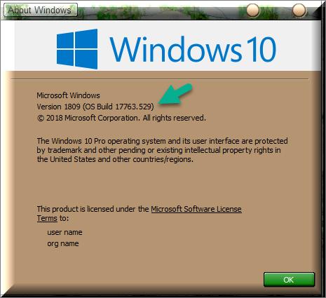 Cumulative Update KB4497934 Windows 10 v1809 Build 17763.529 - May 21-winver-after-installing-kb4497934.png