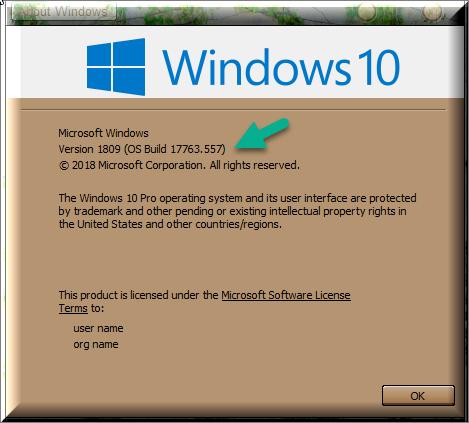 Cumulative Update KB4503327 Windows 10 v1809 Build 17763 557