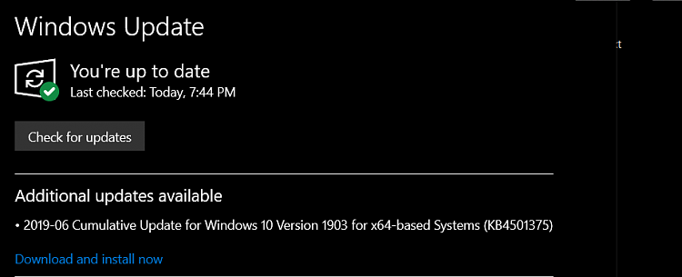 Cumulative Update KB4501375 Windows 10 v1903 build 18362.207 - June 27-image.png