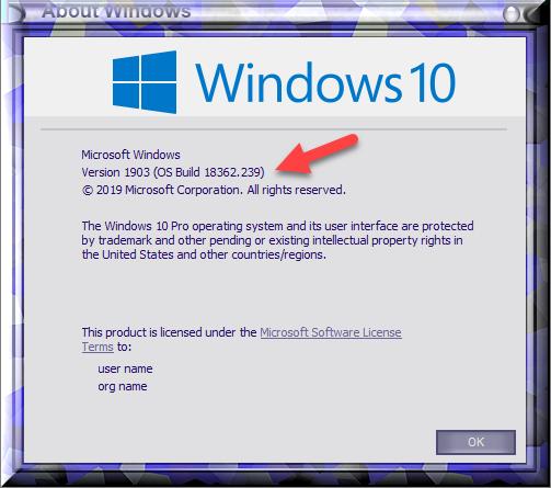 Cumulative Update KB4507453 Windows 10 v1903 build 18362.239 - July 9-winver-after-installing-kb4507453.png