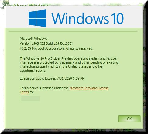 Click image for larger version.  Name:Insiders Version  OS Build 18950.1001.png Views:104 Size:57.7 KB ID:241858