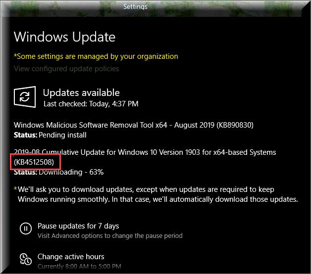 Cumulative Update KB4512508 Windows 10 v1903 build 18362.295 - Aug. 13-installing-kb4512508.png