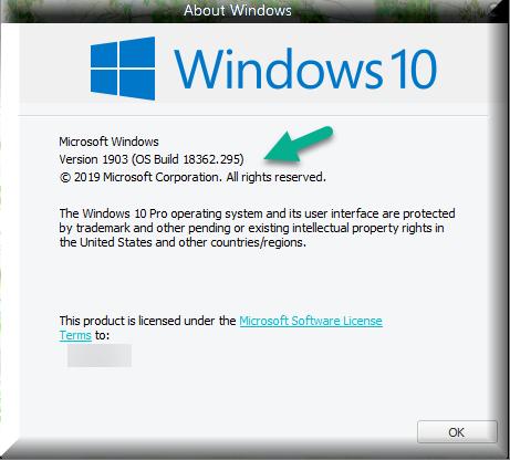 Cumulative Update KB4512508 Windows 10 v1903 build 18362.295 - Aug. 13-winver-after-installing-kb4512508.png