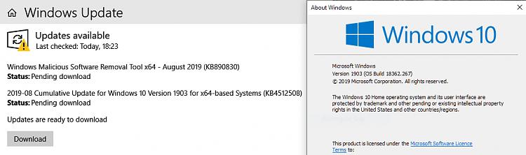 Cumulative Update KB4512508 Windows 10 v1903 build 18362.295 - Aug. 13-image.png