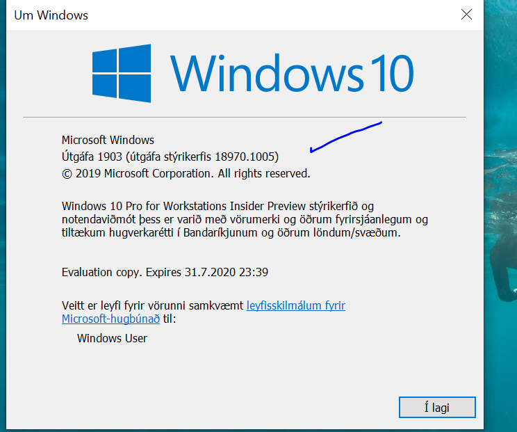 New Windows 10 Insider Preview Fast+Skip Build 18970 (20H1) - Aug. 29-ver1005.png