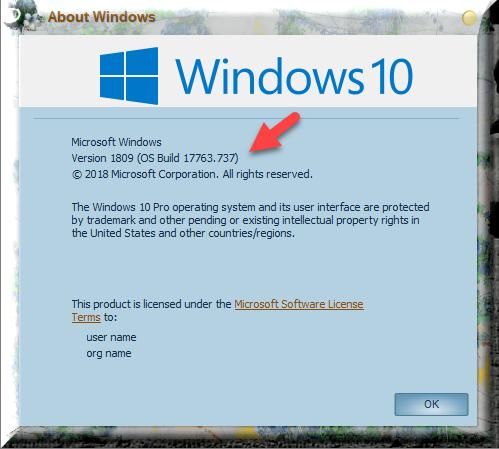 Cumulative Update KB4512578 Windows 10 v1809 Build 17763.737 - Sept.10-winver-after-installing-kb4512578.png