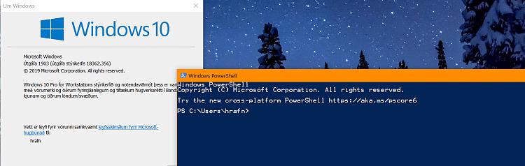 Cumulative Update KB4515384 Windows 10 v1903 build 18362.356 Sept. 10-356.png