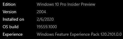 Windows 10 Insider Preview Fast Build 19559.1000 - February 5-wu.jpg