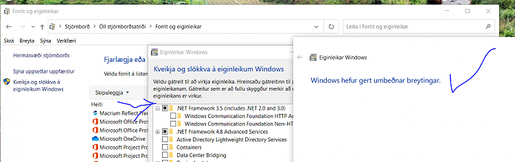 Windows 10 Insider Preview Fast Build 19569.1000 - February 20-net35.png