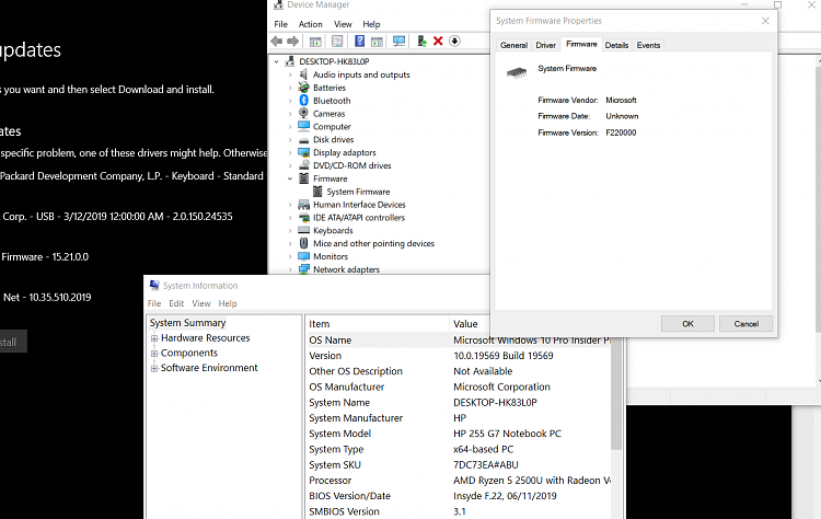 Windows 10 Insider Preview Fast Build 19569.1000 - February 20-screenshot_3.png